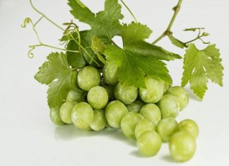 17 health benefits of eating green grapes