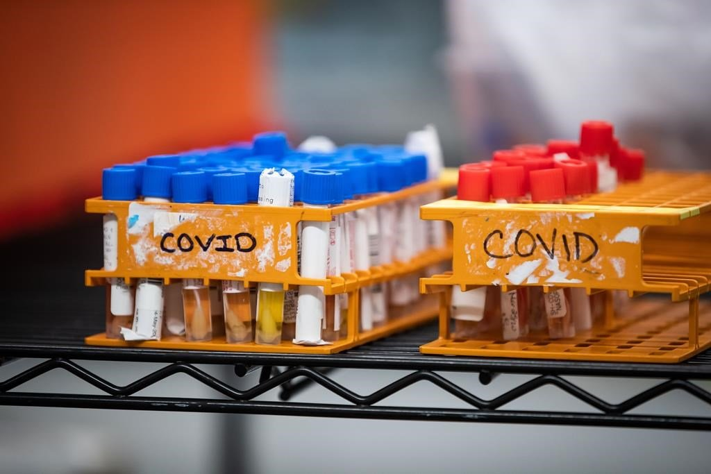 Coronavirus: Ontario government expands guidelines for ...